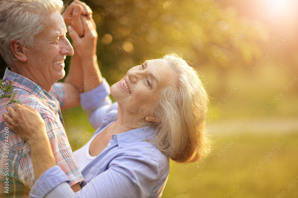 Fototapety, obrazy: Portrait of happy senior couple dancing in summer park