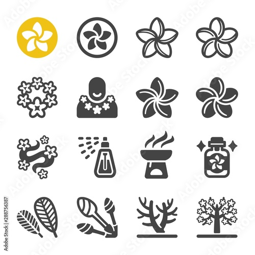plumeria flower icon set,vector and illustration Tableau sur Toile