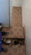 CLOSE UP: Standing Above A Dirty Squatting Latrine In A Smelly Restroom In Tibet