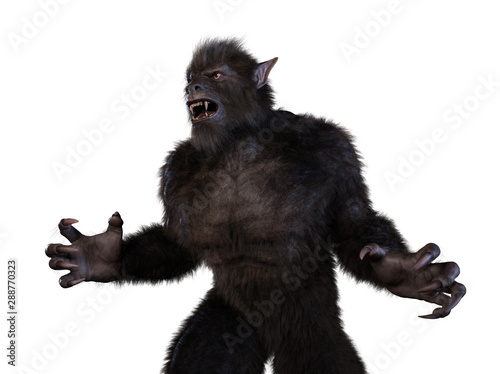 Slika na platnu Aggressive Wolf Beast