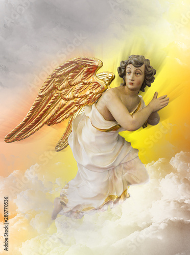 Canvas afdrukken