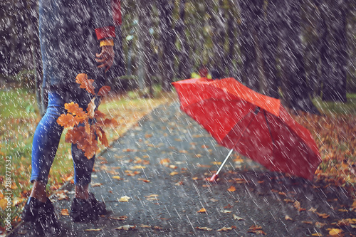 leaf fall autumn / fallen yellow leaves in the hands of a single girl walking in Fototapeta