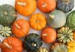 Leinwanddruck Bild - Squash and pumpkins.