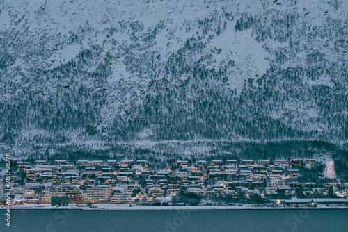 Foto auf AluDibond Stadion Residential hillside houses in Tromso