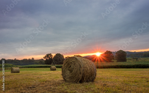 hay for sale sussex nj