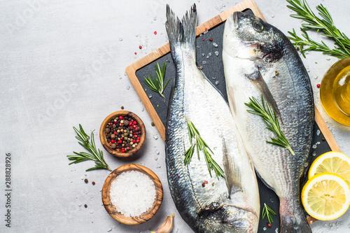 Obraz na plátně  Fresh fish dorado on blue background.