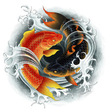 Two Koi Red And Black