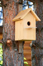 Light Wooden Birdhouse Hanging On A Tree With Circle Entrance
