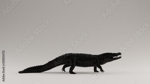 Black Crocodile Right View 3d Illustration 3d render Canvas Print
