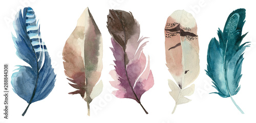 Foto  Set of watercolor feathers