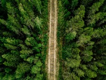 Aerial View Of Railroad Tracks...