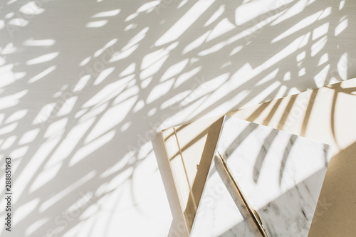 Photo Home office workspace background with notebook on white background with plant shadow