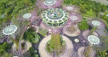 Aerial Footage Of Supertree Gr...