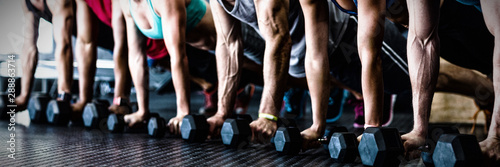 People doing push ups with dumbbell in gym Fototapeta