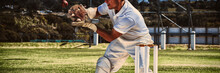 Wicketkeeper Catching Cricket ...