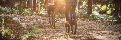 Garden Poster Cycling Rear view of biker couple cycling in countryside