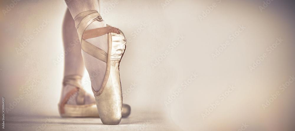Fototapeta Ballerino practising ballet dance in the studio