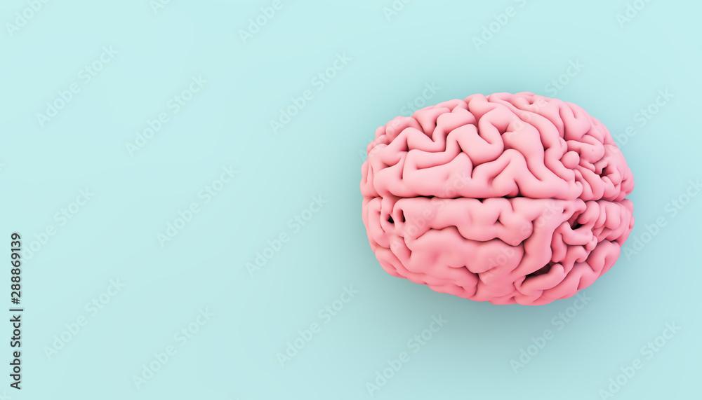 Fototapeta minimal pink brain on blue background
