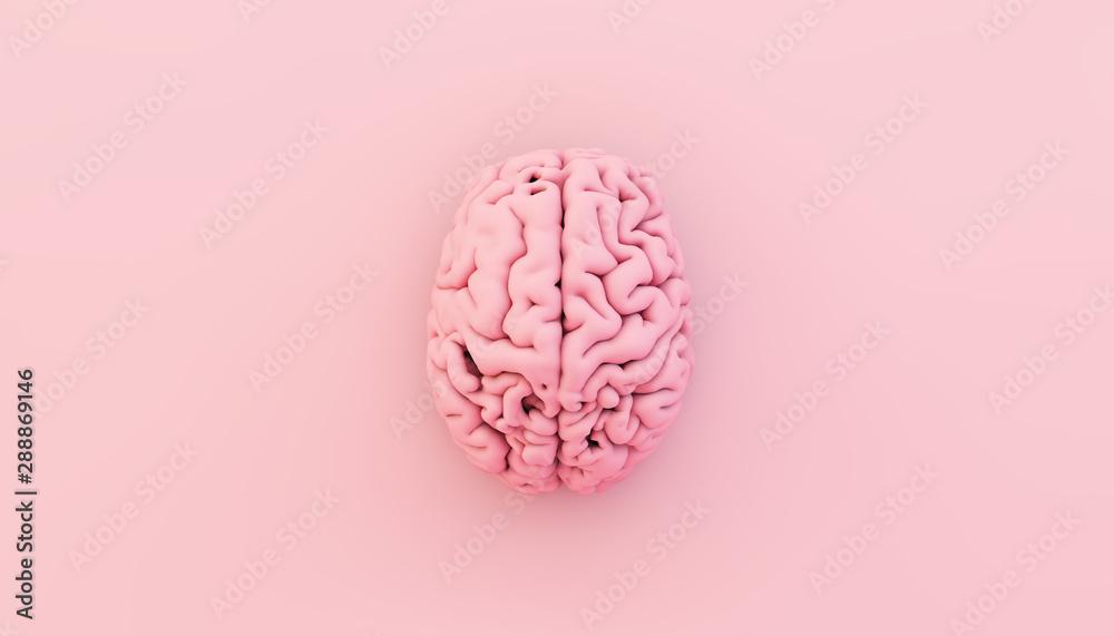 Fototapeta minimal pink brain