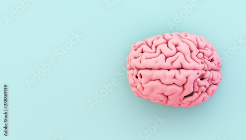 Obraz minimal pink brain on blue background - fototapety do salonu