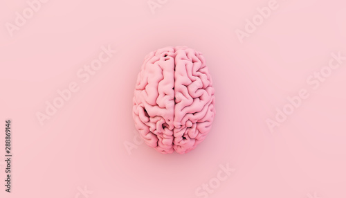 minimal pink brain Canvas Print