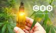 Leinwandbild Motiv Medicinal CBD cannabis extract oil in a bottle. Concept of herbal alternative medicine, cbd oil, pharmaceutical industry