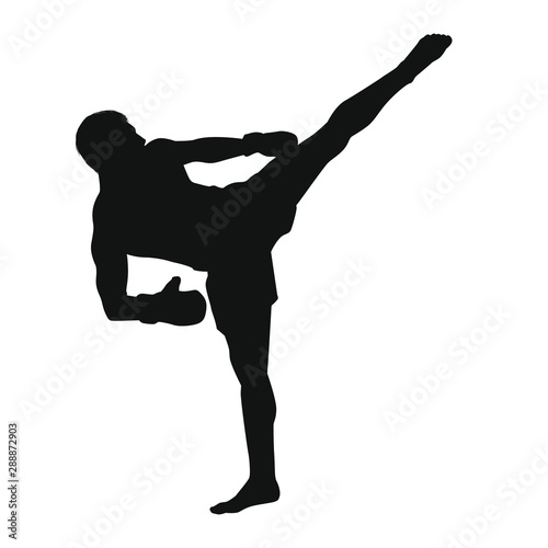 Martial Arts Silhouette Canvas Print