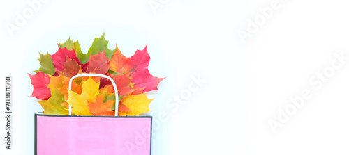 Autumn sale. Paper bag with autumn maple leaves. Shopping concept Canvas Print