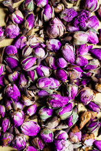 Purple Dried Rose Hips