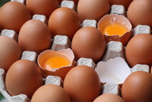 Eggshell  Uncook In Egg Panel ...