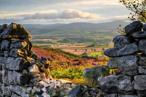 Printed kitchen splashbacks Pale violet Ros Castle view looking west through Dry Stone Wall, also known as Ros Hill, due to an ancient prehistoric Hillfort on its summit, located near Chillingham in Northumberland and has great views