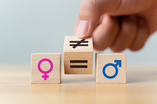 Concepts Of Gender Equality. H...