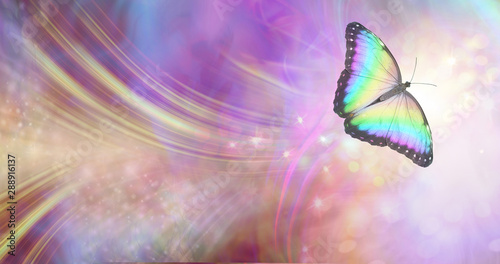 Fototapeta Transformation and spiritual release concept - vibrant butterfly against a white