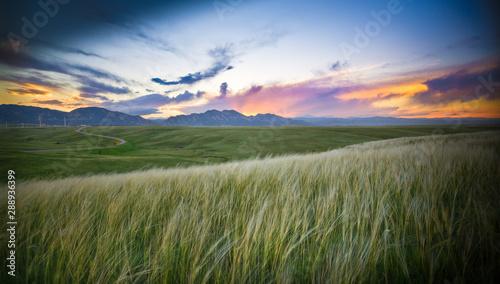 Obraz Boulder Colorado Sunset - fototapety do salonu