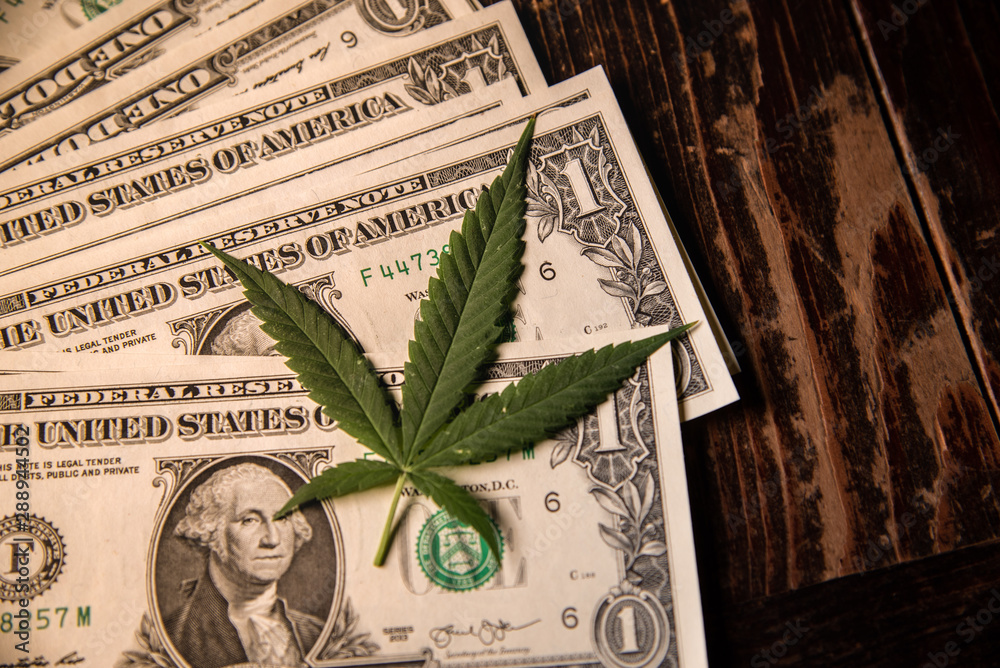 Fototapety, obrazy: Money Marijuana Dollar bill and Medical Marijauna on Table