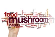 Mushroom Word Cloud
