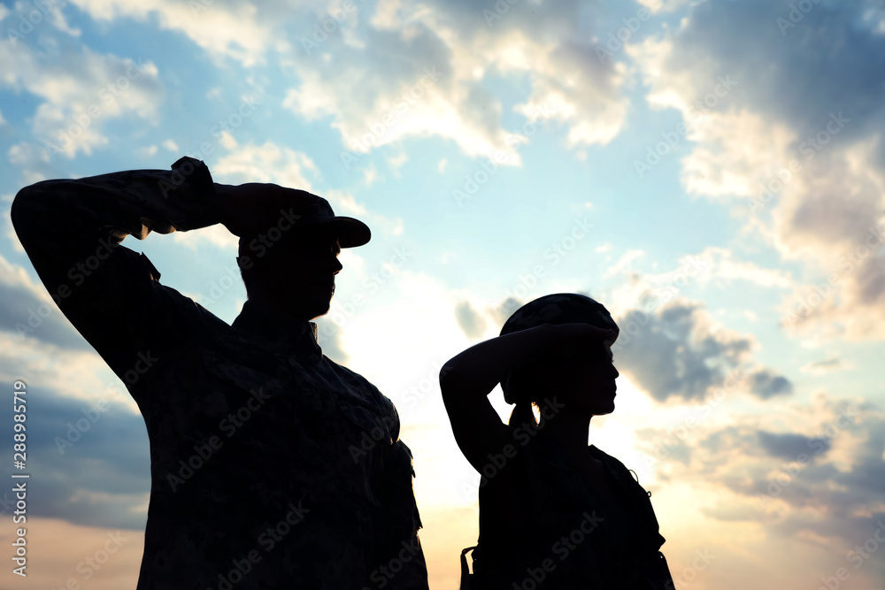 Fototapeta Soldiers in uniform saluting outdoors. Military service