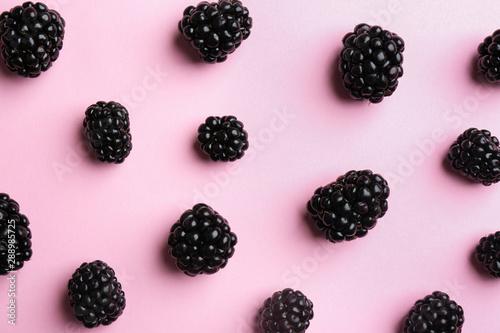 Flat lay composition with fresh blackberries on pink background Tapéta, Fotótapéta