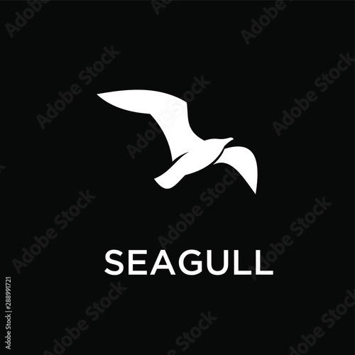 Fotografía seagull logo icon designs vector