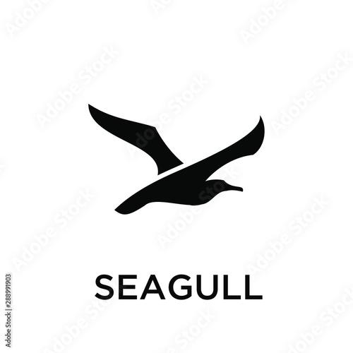 Cuadros en Lienzo seagull logo icon designs vector