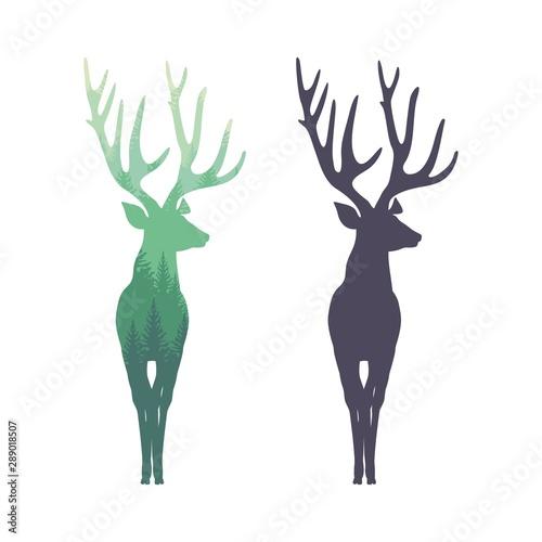 Fotografie, Obraz  Deer silhouette