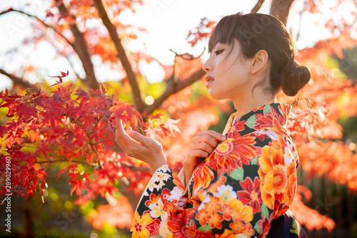Fotografía  紅葉と着物の女性