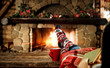 canvas print picture Woman legs with christmas socks and fireplace