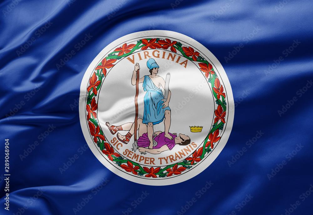 Fototapety, obrazy: Waving state flag of Virginia - United States of America