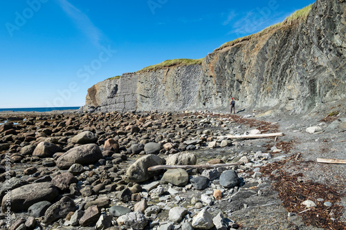 Man Looking for Trilobite Fossils During Lowtide in Green Point, Gros Morne Nati Canvas Print