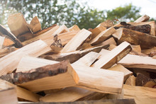 Birch Wood Split Into Pieces For Fireplace And Home Heating