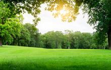 Fresh Air And Beautiful Natura...