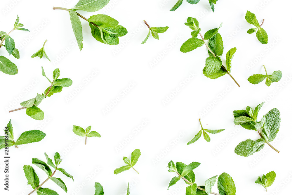 Fototapety, obrazy: Frame from мint branchs and leaves isolated on white background. Set of peppermint. Mint Pattern. Flat lay. Top view.