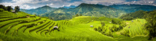 Landscape Panorama Of Vietnam,...