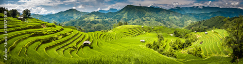 Fotografie, Obraz Landscape panorama of Vietnam, terraced rice fields of Hoang Su Phi district, Ha Giang province